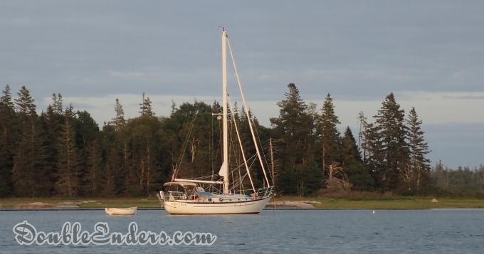 White sailboat against a pine strewn coast
